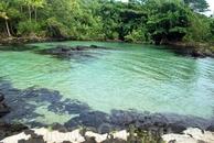 Большой Остров -Лагуна Юности