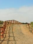 Вот такие вот тропы проложены в парке. Крупные антилопы не смогут пересечь заграждение, а вот маленькие газели вполне могут пройти сквозь щели