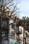 Дома на главной улице Круповки