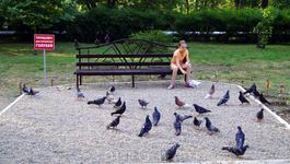 Специальное место для кормления птиц