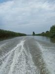 Плывем на лотосовые поля