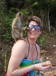 На острове обезьян.