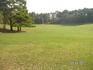 любимая поляна парка
