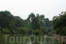 Лебединое озеро, в центре - деревянная скульптура лебедей