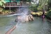 Пут поливает слоненка, зрелище весьма интересное