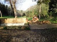 Парк Parque Natural de la Font del Boter