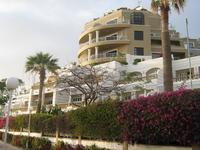 Канарские острова . Тенерифе .На пляжной полосе курорта Лас Америкас