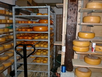 Просто сыр и сыр с укропом и крапивой-вкусно!В холодильнике хранить не надо,так что до дома довезла.