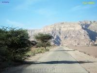По дороге в Тимна