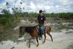 прогулки на конях к Белому озеру
