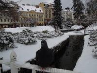 Утки и голуби в центре парка Вас ожидают  в любую погоду