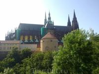 собор св.Витта