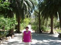 Карфаген сегодня – это престижный пригород столицы страны. Там находится и летняя резиденция президента страны. Руины Карфагена располагаются в нескольких ...