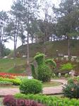 Цветочный сад Далата