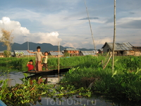 озеро инле.плавучие огороды