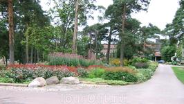Цветы в парке Йсопуйсто