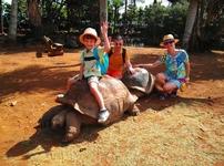 А потом мы еще прокатились на огромных столетних черепахах
