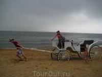 Скачи мой верный конь)))