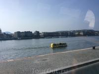 А это знаменитый будапештский автобус-амфибия. Ура! - мы его увидели)))