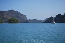 Не море. Водное путешествие в мангровые леса.