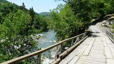Деревянный мост в поселке Гузерипль