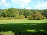 природа в прекрасный осенний солнечный день (парк в английском стиле)