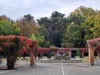 Одно из самых красивых мест города вот эта арка-пергола, увитая виноградом, окружающая фонтан Лебедь.