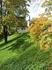 Трава все еще яркая и сочная, замечательный контраст с пожелтевшей листвой