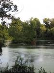 Небольшой пруд в парке с островком