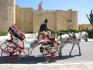 Старинный туристический транспорт-гужевой сохранился и работает на нас, туристов...