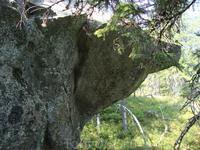 Этот камень напоминает медведя.