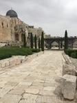 Ежегодно многие тысячи гостей наполняют улицы Иерусалима. Туристы бродят по улочкам арабского рынка, благоговейно молчат у Стены Плача, ступают по камням Виа Долороса, следуя по крестному пути.  Для