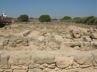 на территории Археологического музея в Пафосе