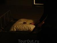 Петропавловская крепость. Тюрьма Тробецкого бастиона.  Нам показали театрализованное представление.