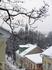 Улочки зимнего Тарту - улица Lossi.