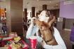 Европа с собакой в кафе, легко...