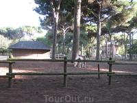 территория Parco Naturale