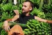 В этот год урожай бананов в Хампи удался!