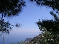 Пейзажи. Снимок из автобуса