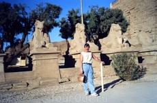 На аллее сфинксов Луксорскго храма