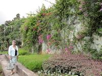 Ботанический сад - раздел секкулентов