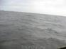 """""""Образец"""" заставшей нас непогоды. К счастью наше судно было очень остойчивым, но даже его здорово шатало."""