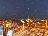 Аджман рыбный рынок 3