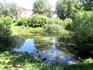 Рядом с домом художников расположен карякинский парк. Заросший пруд
