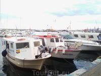 С тем, чтобы затем продать свой улов на местной бирже, так называют торги-аукцион, на которых происходит закупка рыбы и морепродуктов