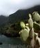 побережье ок. деревни Сейшал, Мадейра
