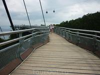 Небесный мост. Этот мост является одним из наиболее высоких одноопорных сооружений подобного рода. Расположен столь необычный мост в Малайзии и ведет к вершине древней горы, возраст которой составляет