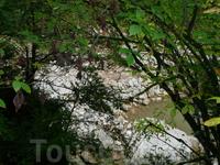 Гуамское ущелье. Подглядывали из-за кустов :).
