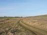 Это совсем уже заросшая травой дорога. Летом здесь часто встречаются местные гадюки, но людей они боятся и быстро уползают в кусты.