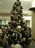 Елка в отеле на Новый год